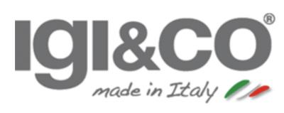 logo IGI and CO