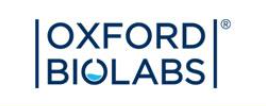 logo Oxford Biolabs