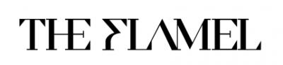 logo TheFlamel