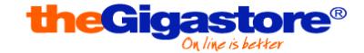 logo TheGIgaStore