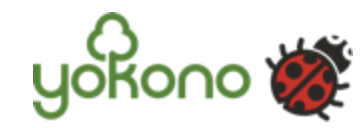 logo Yokono CPA